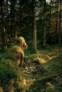 Smaland_fiktive-Welten_Christina-Glanz_Naturtroll